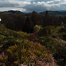 Peebles Hydro View by photobymdavey
