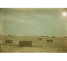 Golden Fields Photographic Print