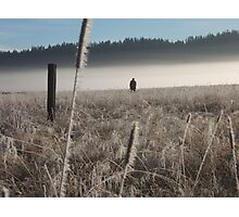 Morning hunt Photographic Print
