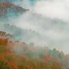 AUTUMN MIST,SUGARLANDS VALLEY by Chuck Wickham
