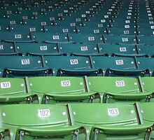 Wrigley Field Seats by Justin428