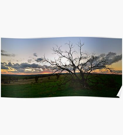 Country Sunset. Poster