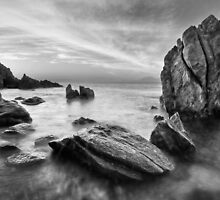 The Timeless Shore by Dieter Tracey