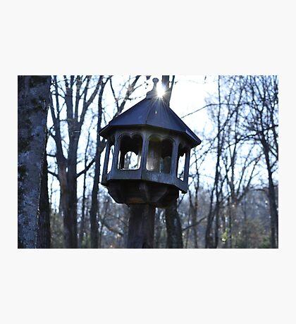 Bird House Light  Photographic Print