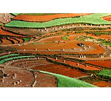 Patterns at Dongchuan Photographic Print