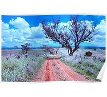 Country Roads - Cootamundra, NSW -The HDR Experience Poster