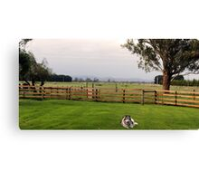 Victorian Farm Panorama Canvas Print