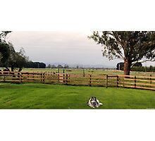 Victorian Farm Panorama Photographic Print