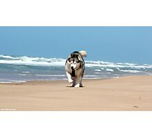 Seaspray Beach 3 Photographic Print