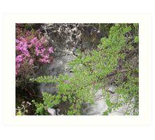 Fresh Water and flowers  Art Print
