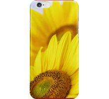 Sommer iPhone Case/Skin