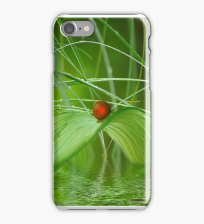 Wellness Brücke iPhone Case/Skin
