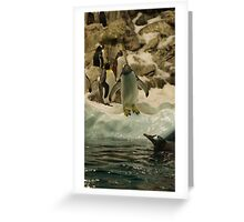 Young Penguin Greeting Card