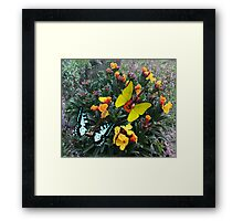 Spring Rocks Framed Print