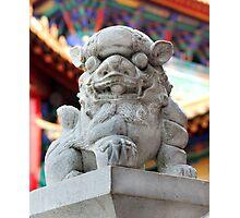 Temple Lion 2 Photographic Print
