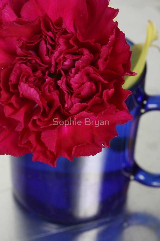 Flower Cup by Sophie Bryan