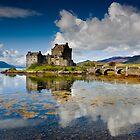 Eilean Donan Castle , Scotland by Angie Latham