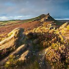 Ramshaw Rocks by James Grant