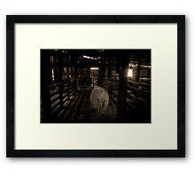 Where sheep used to roam... Framed Print