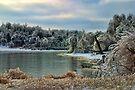 Frozen Cove by Carolyn  Fletcher