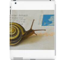 Snail mail iPad Case/Skin