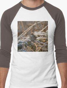 cold feet Men's Baseball ¾ T-Shirt