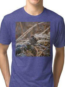 cold feet Tri-blend T-Shirt