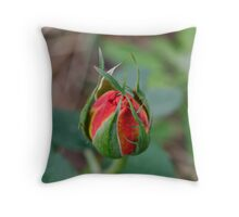 One for the Ladies Throw Pillow