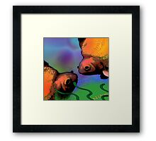 Nature. Fish Framed Print