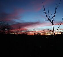 Painted Sky Over Kerrville by arr333