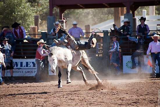 The Rodeo by thruHislens .
