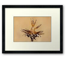 Fall Plant Framed Print