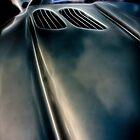 Fractalius Peugeot by Nigel Butterfield