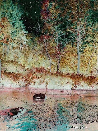 Salmon Creek.... by linmarie