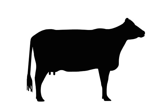 "Cow silhouette as sign or clipart"" by naturaldigital 