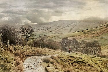 Late Winter In Derbyshire by patrixpix
