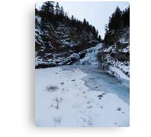 Cameron in Winter Canvas Print