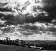 To be a painter, one must work with rays of light. by Paul Richards