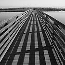 Bridge at The Bolsa Chica Wetlands by arr333