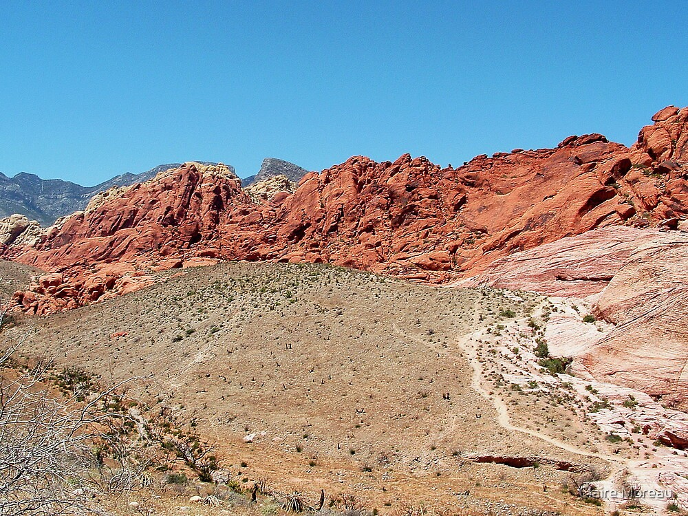 RED ROCK CANYON STATE PARK, NV by Claire Moreau