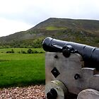 Tiny Cannon by dgscotland