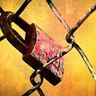 Locked Up by Andre Faubert