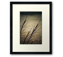 Nature Landscape Framed Print
