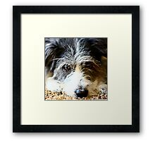 Maggie Maggie Framed Print