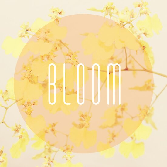 Typography: Bloom by GalaxyEyes