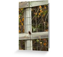 Autumn Butterfly Greeting Card