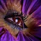 Eye in the Flower by Andre Faubert