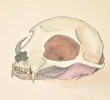 Cat Skull by TheoryAndLace