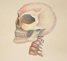Skull Color by TheoryAndLace