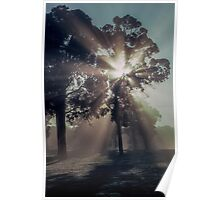 Early morning Boyup Brook 19820827 0002 Poster